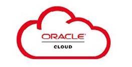 Oracle DevOps Explorer
